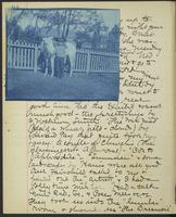 Occluded Image of May Bragdon Diary, May 24, 1893 – May 25, 1893, p. 94