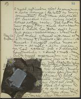 Occluded Image of May Bragdon Diary, May 25, 1893 – May 27, 1893, p. 95