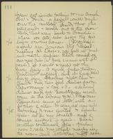 May Bragdon Diary, November 9, 1902 – November 15, 1902, p. 114